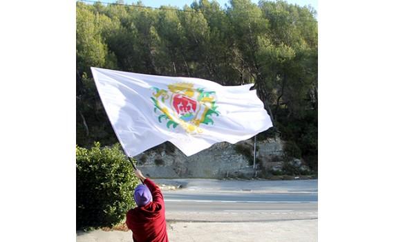 drapeau-hampe-telescopique