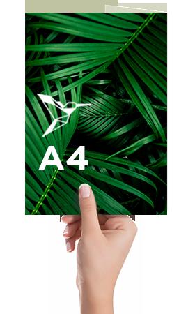 Plaquette-3V-A4