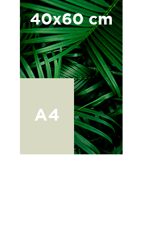 Affiche-fluo-40x60