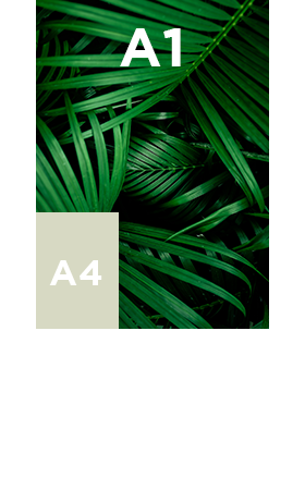 Poster-contrecollé-A1