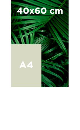 Akilux-40x60