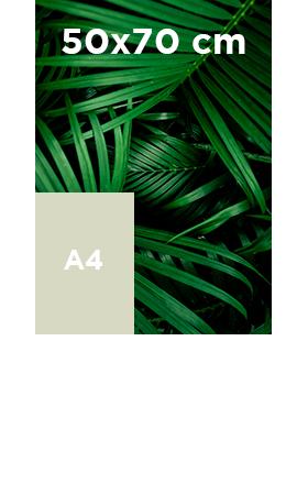 Akilux-50x70