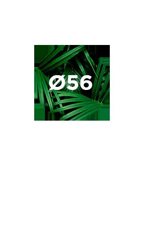 Miroir-56