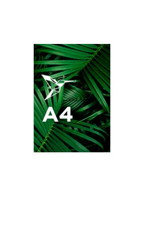 Calendrier-souple-A4
