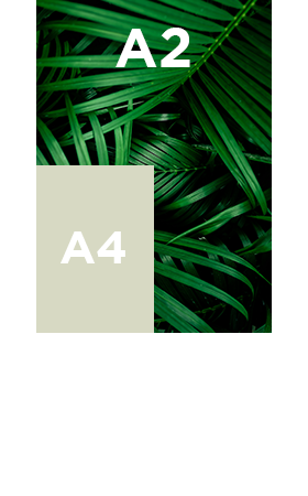 Affiche A2
