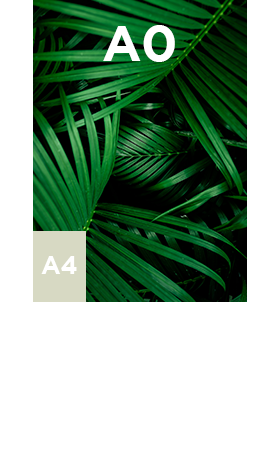 Vinyle-adhesif-blanc-enlevable-A0