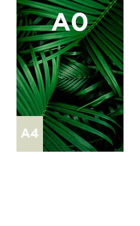 Vinyle-transparent-standard-A0