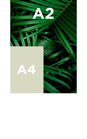 Vinyle-transparent-standard-A2