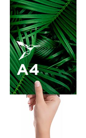 Livre-couverture-souple-A4