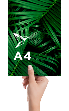 Bloc-notes-a-spirale-A4