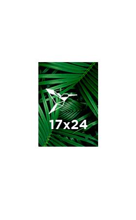 Brochure-spirale-17x24