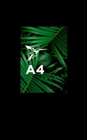 Impression-sans-reliure-A4