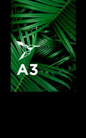 Brochure-avec-spirale-A3